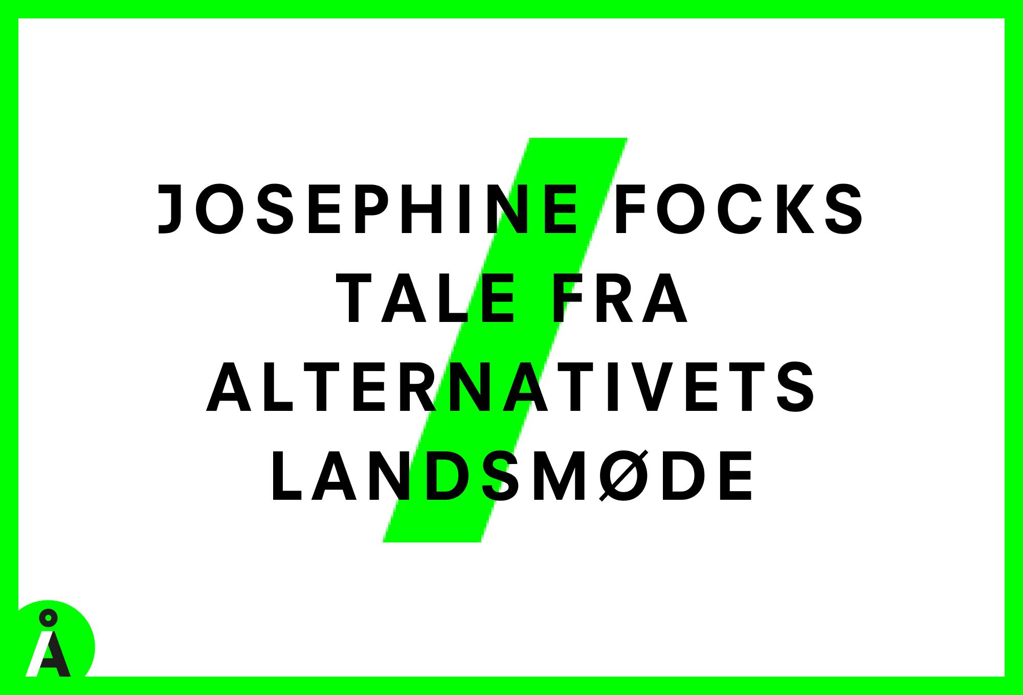 Josephine Focks Landsmødetale 2020